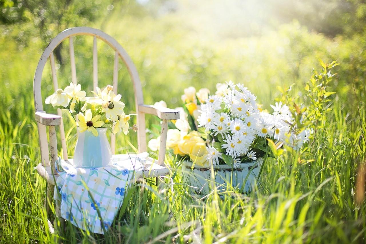 Porządki wiosenne w ogrodzie – jak zrobić szybko i bez zbędnych kosztów?